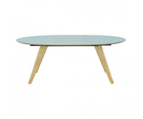 Ryder Oval Extendable Dining Table